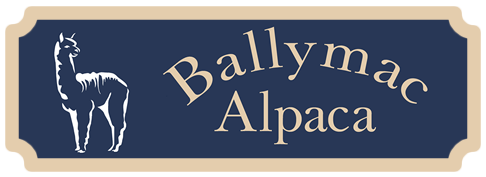 Ballymac Alpaca – Breeding and Sales